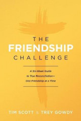Omslag - The Friendship Challenge