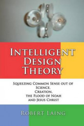 Intelligent Design Theory av Robert Laing (Heftet)
