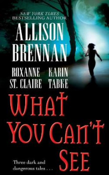 What You Can't See av Allison Brennan, Karin Tabke og Roxanne St Claire (Heftet)