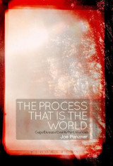 Omslag - The Process That is the World