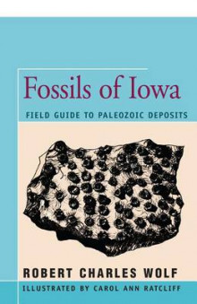 Fossils of Iowa av Robert Wolf (Heftet)