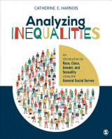 Omslag - Analyzing Inequalities