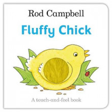 Fluffy Chick av Rod Campbell (Pappbok)