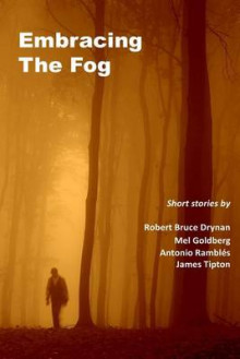 Embracing the Fog av Mel Goldberg, Robert Bruce Drynan og James Tipton (Heftet)