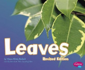 Leaves (Plant Parts) av Vijaya Khisty Bodach (Heftet)