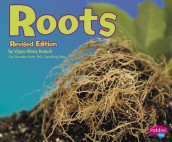 Roots (Plant Parts) av Vijaya Khisty Bodach (Heftet)