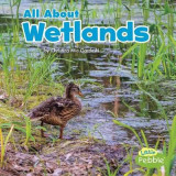 Omslag - All about Wetlands