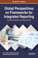 Omslag - Global Perspectives on Frameworks for Integrated Reporting