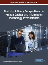 Omslag - Multidisciplinary Perspectives on Human Capital and Information Technology Professionals