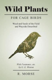 Wild Plants for Cage Birds - Weed and Seeds of the Field and Wayside Described - With Footnotes, Etc., by G. E. Weston av R Morse (Heftet)