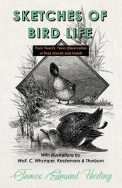 Sketches of Bird Life - From Twenty Years Observation of Their Haunts and Habits - With Illustrations by Wolf, C. Whymper, Keulemans, and Thorburn av James Edmund Harting (Heftet)