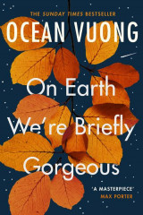 Omslag - On earth we're briefly gorgeous
