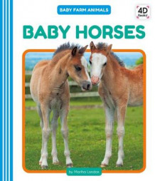 Baby Horses av Martha London (Innbundet)