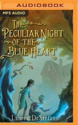 Omslag - The Peculiar Night of the Blue Heart
