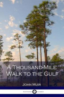 A Thousand-Mile Walk to the Gulf av John Muir (Heftet)