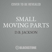 Small Moving Parts Lib/E av D B Jackson (Lydbok-CD)
