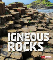 Igneous Rocks av Ava Sawyer (Innbundet)