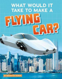 What Would It Take to Make a Flying Car? av Megan Ray Durkin (Innbundet)