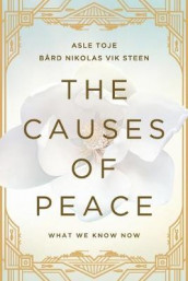 The Causes of Peace av Bard Nikolas Vik Steen og Asle Toje (Heftet)
