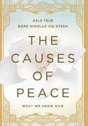 The Causes of Peace av Bard Nikolas Vik Steen og Asle Toje (Innbundet)