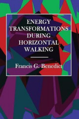 Omslag - Energy Transformations During Horizontal Walking