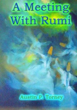 Omslag - A Meeting with Rumi