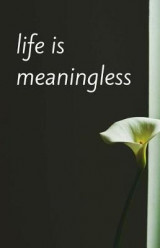 Omslag - Life Is Meaningless (Notebook)