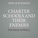 Omslag - Charter Schools and Their Enemies