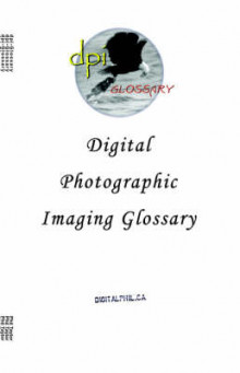 Digital Photographic Imaging Glossary av Philip M. Taylor (Heftet)