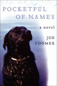 Pocketful of Names av Joe Coomer (Heftet)