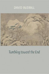 Omslag - Tumbling Toward the End