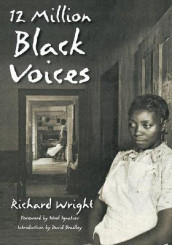 12 Million Black Voices av Richard Wright (Heftet)