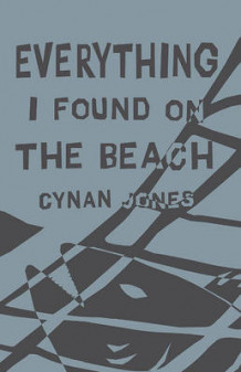 Everything I Found on the Beach av Cynan Jones (Heftet)