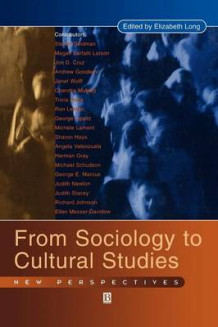 Engaging Sociology and Cultural Studies (Innbundet)