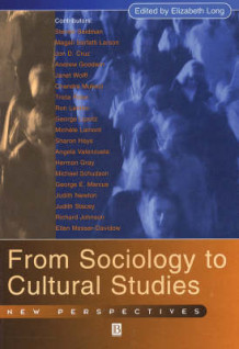 Engaging Sociology and Cultural Studies (Heftet)