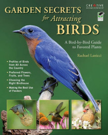 Garden Secrets for Attracting Birds av Rachael Lanicci (Heftet)