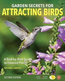 Garden Secrets for Attracting Birds, Second Edition av Rachael Lanicci (Heftet)