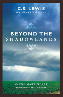 Beyond the Shadowlands av Wayne Martindale (Heftet)