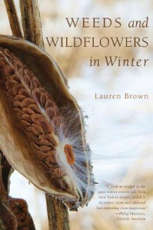 Weeds and Wildflowers in Winter av Lauren Brown (Heftet)