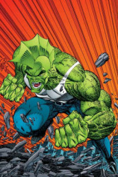 Savage Dragon Archives Volume 1 av Erik Larsen (Heftet)
