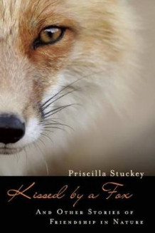 Kissed by a Fox av Priscilla Stuckey (Heftet)