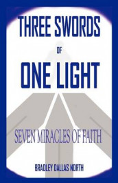 Three Swords of One Light av David Keith Sumrell (Innbundet)