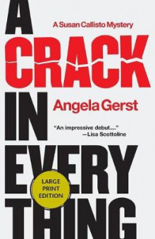 A Crack in Everything av Angela Gerst (Heftet)