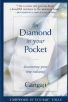 Omslag - Diamond in Your Pocket
