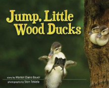 Jump, Little Wood Ducks av Marion Dane Bauer (Innbundet)