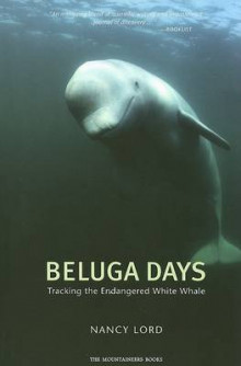 Beluga Days av Nancy Lord (Heftet)