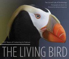 Living Bird av Gerrit Vyn og Cornell Lab of Ornithology (Innbundet)