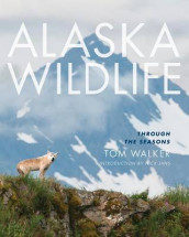 Alaska Wildlife av Tom Walker (Heftet)