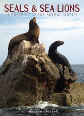 Seals & Sea Lions av Andrew Cleave (Innbundet)