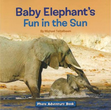 Baby Elephant's Fun in the Sun av Prof Michael Teitelbaum (Heftet)